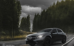 Picture car, mercedes, forest, mercedes-benz, road, sky, jungle, benz, cloud, tree, amg, street, germany, vehicle, cloudy, ...