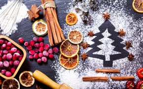 Picture berries, holiday, orange, New year, cinnamon, herringbone, powdered sugar, star anise, cranberry