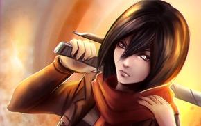 Picture art, Shingeki no Kyojin, Attack of the titans, Mikasa Ackerman