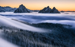 Picture winter, snow, trees, mountains, fog, Alps, forest