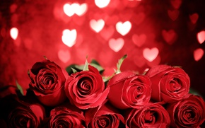 Wallpaper red roses, heart, love, valentine`s day, roses, romantic, gift, red, flowers