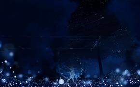 Picture the sky, girl, night, wings, shooting star, bokeh, Y_Y