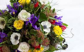 Picture Flowers, Bouquet, Composition