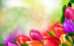 Wallpaper brightness, tulips, figure, flowers