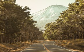 Wallpaper forest, road, mountain