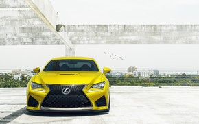 Picture car, Lexus, light, Yellow, RCF