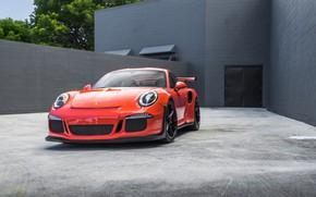 Wallpaper Porsche, 911, Ginger, VAG, Carrera, GT3