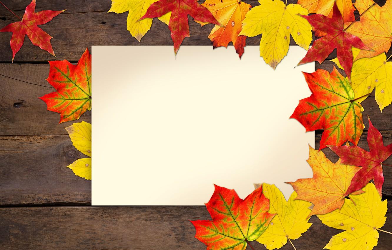 Photo wallpaper autumn, leaves, postcard, blank