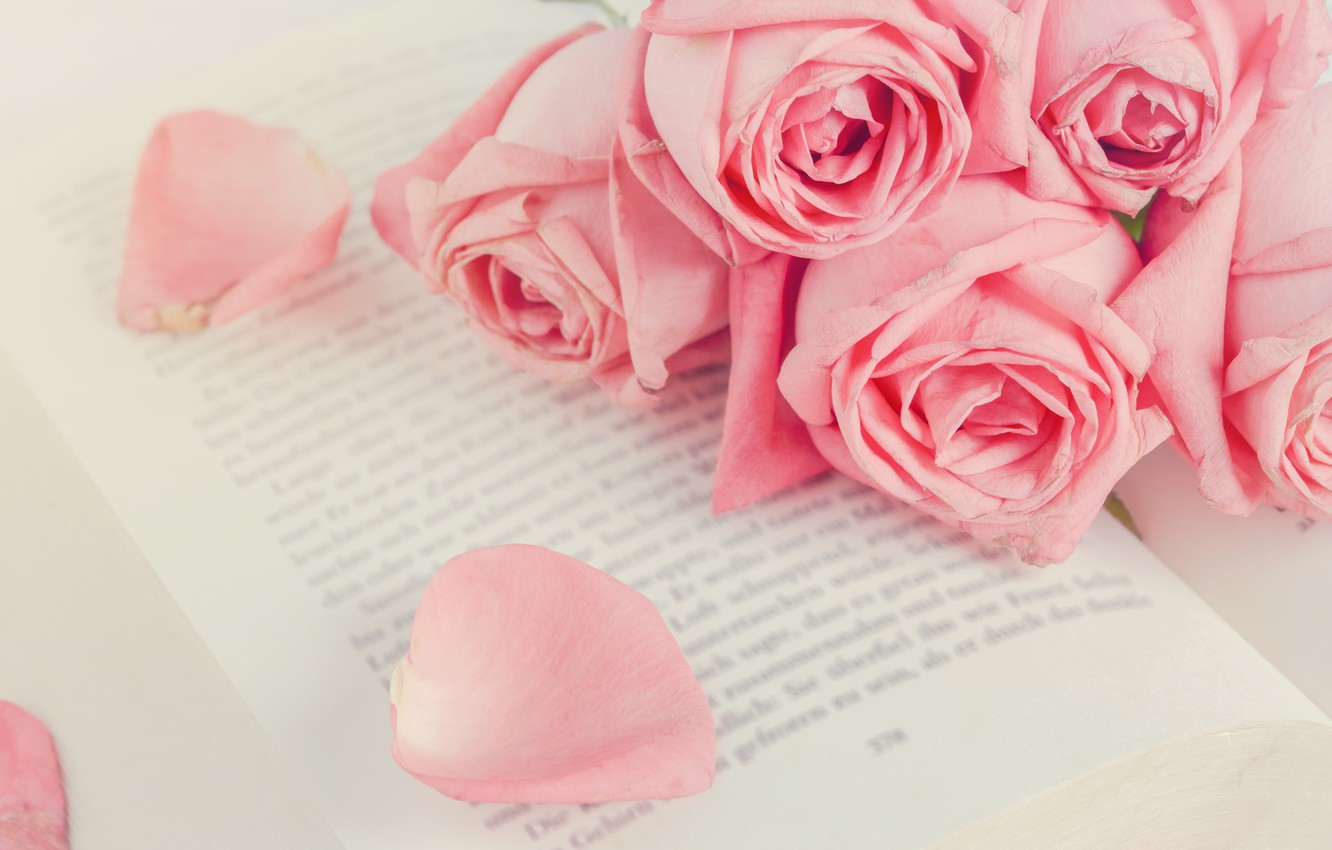 Photo wallpaper flowers, roses, petals, pink, buds, pink, flowers, romantic, petals, roses, cute