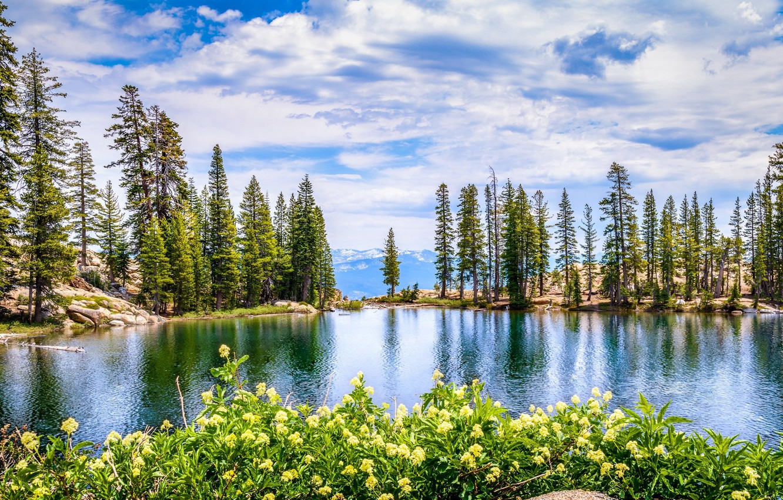 Wallpaper The Sky Clouds Spring Landscape Images For Desktop Section Pejzazhi Download