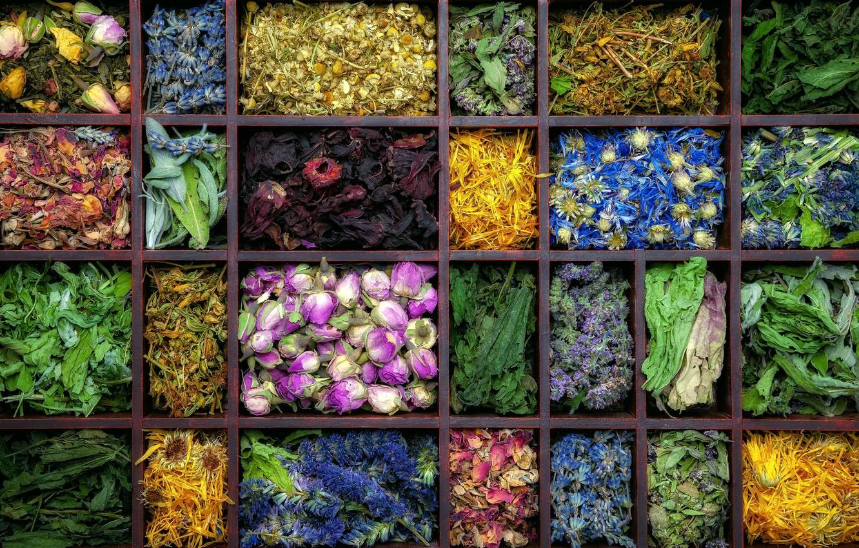 Photo wallpaper flowers, tea, tray, teas