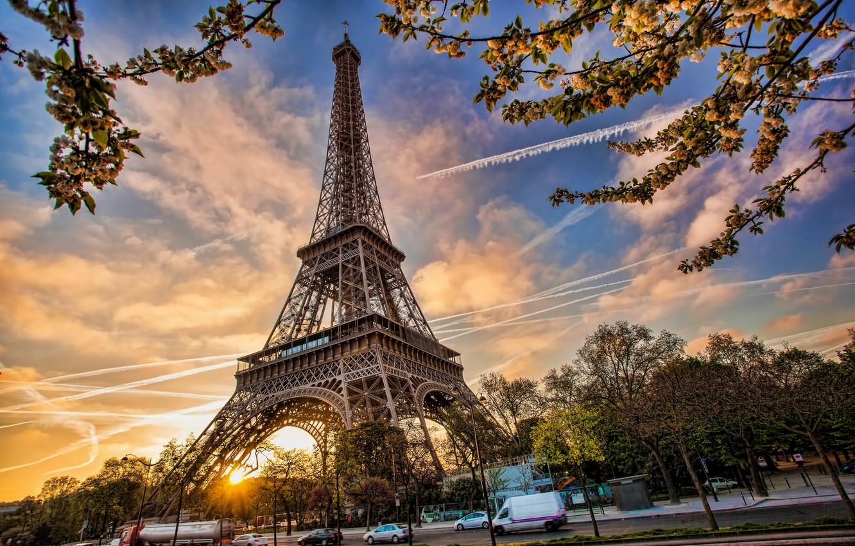Photo wallpaper France, Paris, spring, Paris, blossom, France, spring, Eiffel Tower, cityscape