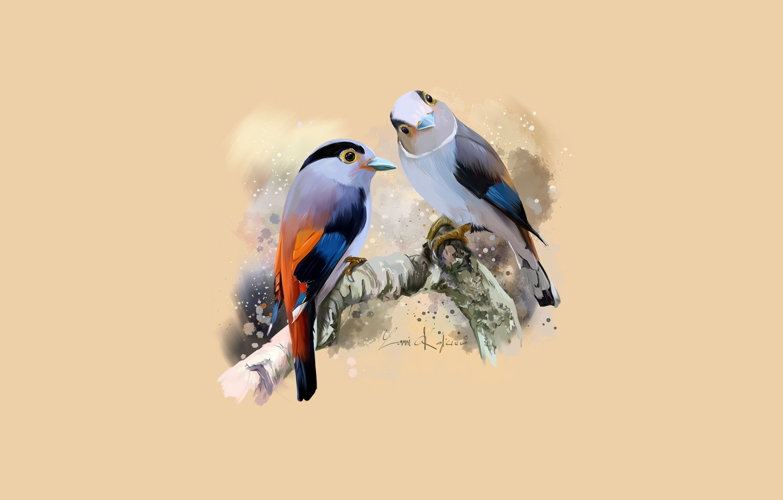 Photo wallpaper branch, pair, birds