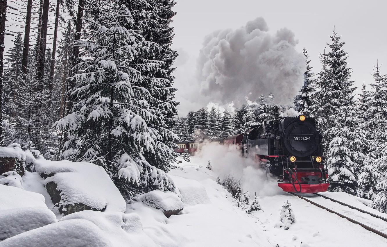 Photo wallpaper winter, forest, train