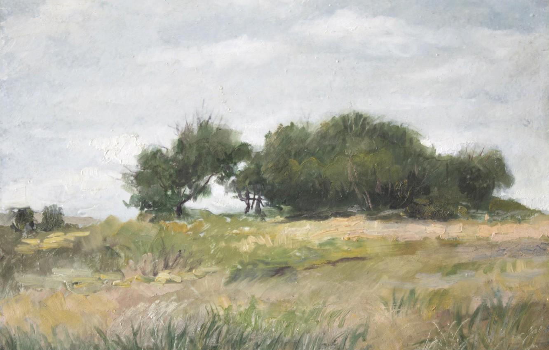 Photo wallpaper landscape, Trees, 2008, Aibek Begalin, Spassk