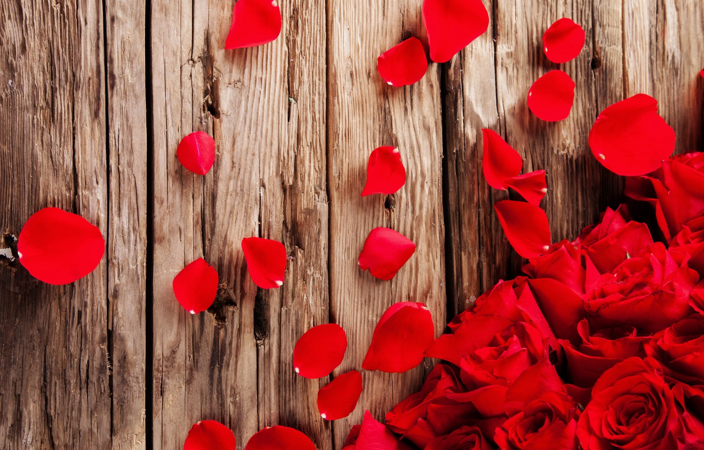 Photo wallpaper roses, petals, red, red, rose, buds, wood, flowers, romantic, petals
