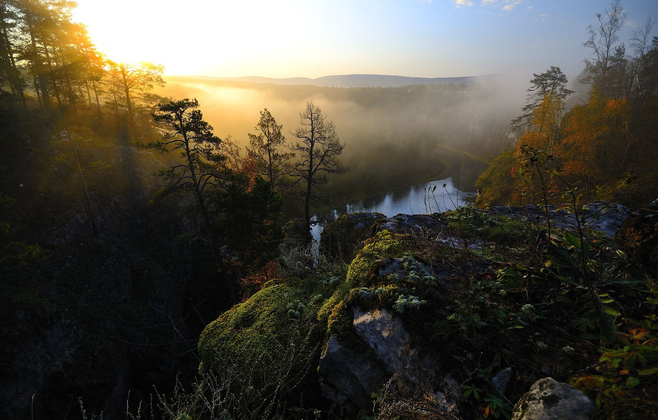Photo wallpaper forest, rays, light, fog, rock, open, dawn, moss, morning, the river ay, pricesi