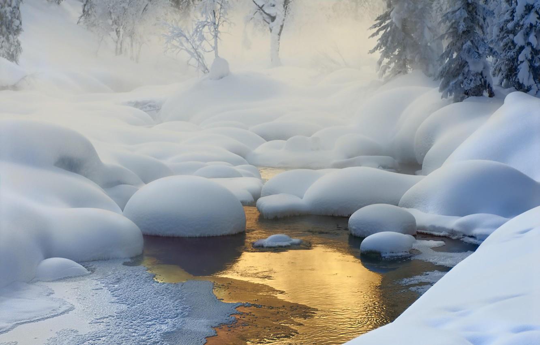 Photo wallpaper winter, forest, light, snow, trees, nature, river, haze