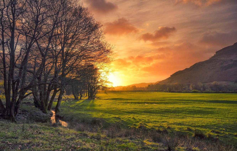 Wallpaper Field Trees Sunset Stream England Glow
