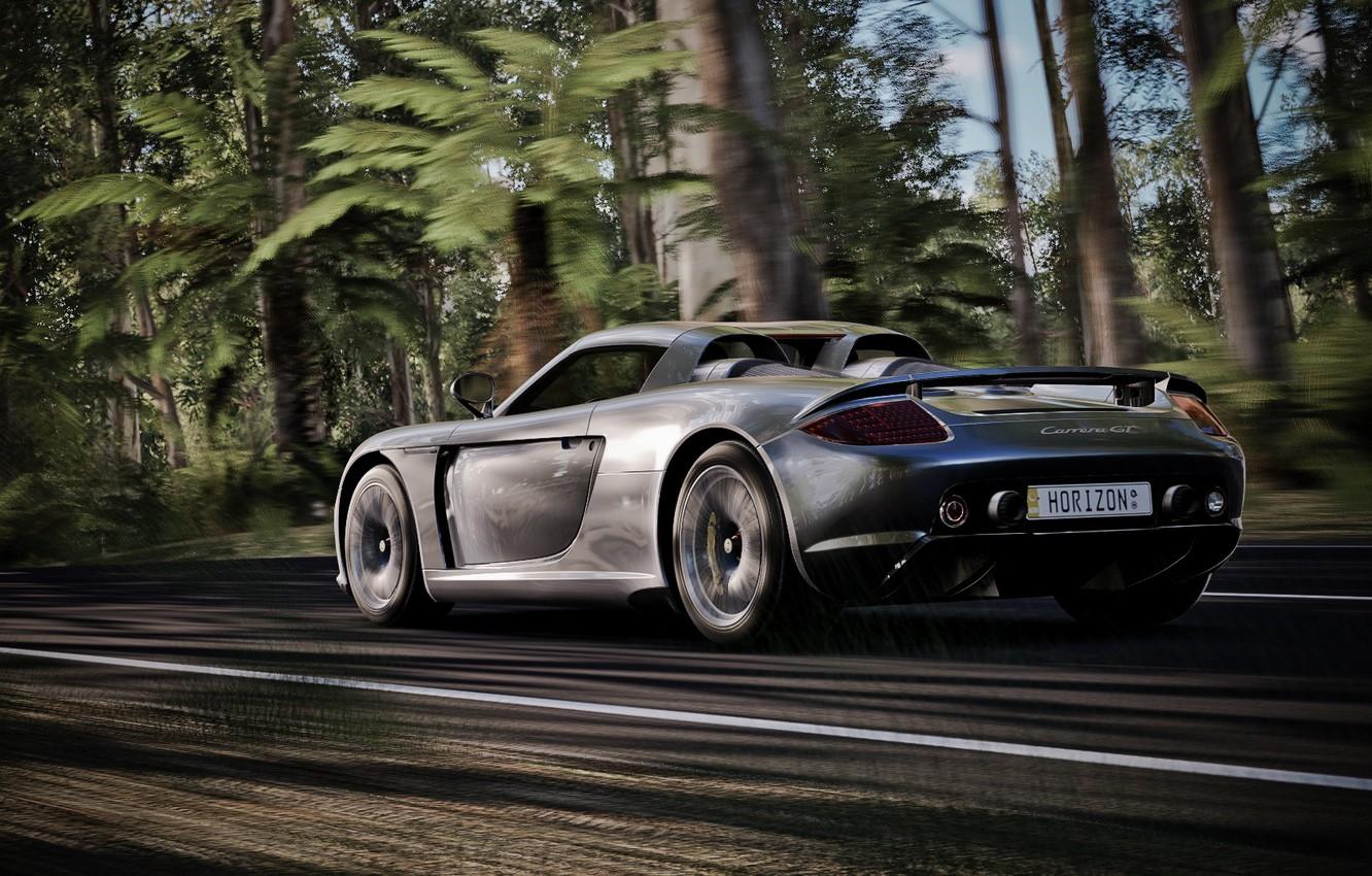 Photo wallpaper road, speed, supercar, Carrera, Porsche Carrera GT