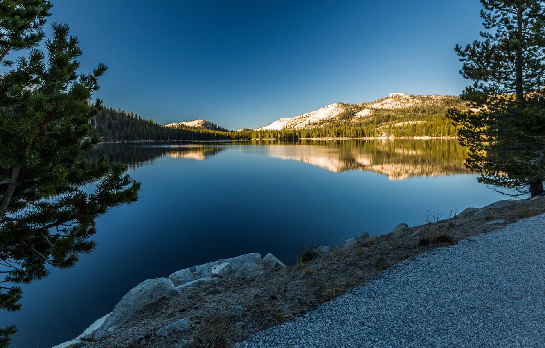 Photo wallpaper trees, mountains, lake, reflection, CA, pine, California, Yosemite National Park, Sierra Nevada, Sierra Nevada, Tioga …