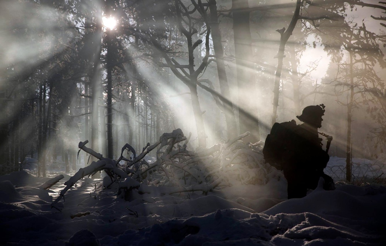 Photo wallpaper winter, forest, soldiers