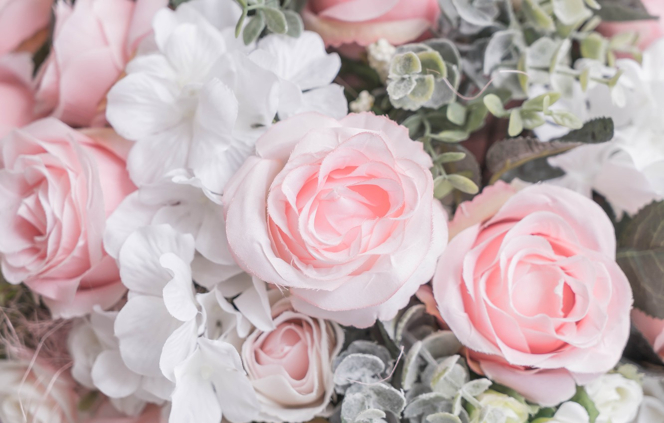 Photo wallpaper flowers, roses, petals, pink, white, buds