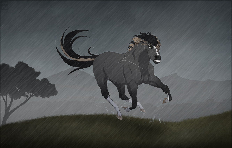Photo wallpaper rain, horse, horse, tears, cross