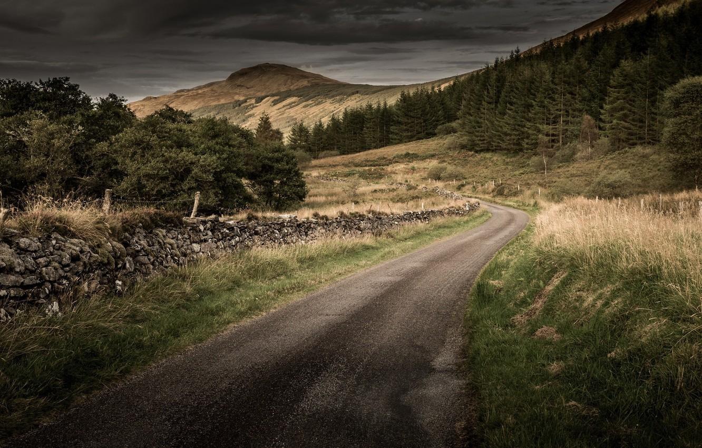 Photo wallpaper road, grass, mountains, tree