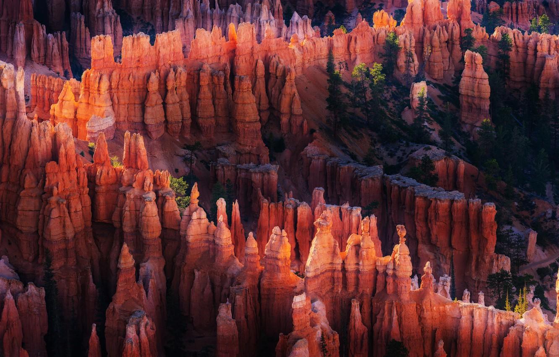 Photo wallpaper light, nature, rocks, canyon, USA