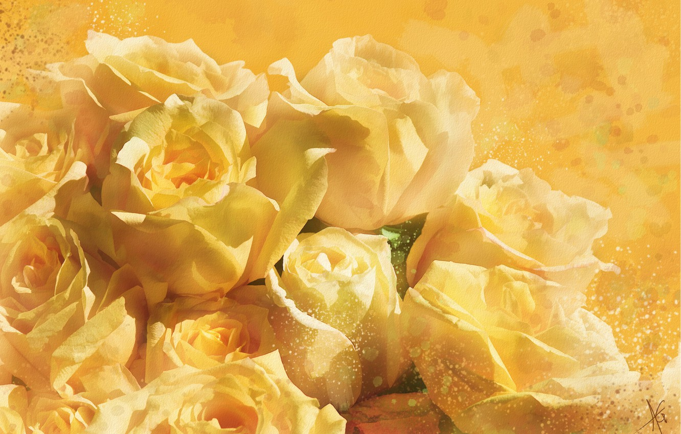 Photo wallpaper flowers, yellow, background, figure, graphics, roses, treatment, picture, petals, art, white, painting, gently, easy, drawing, …
