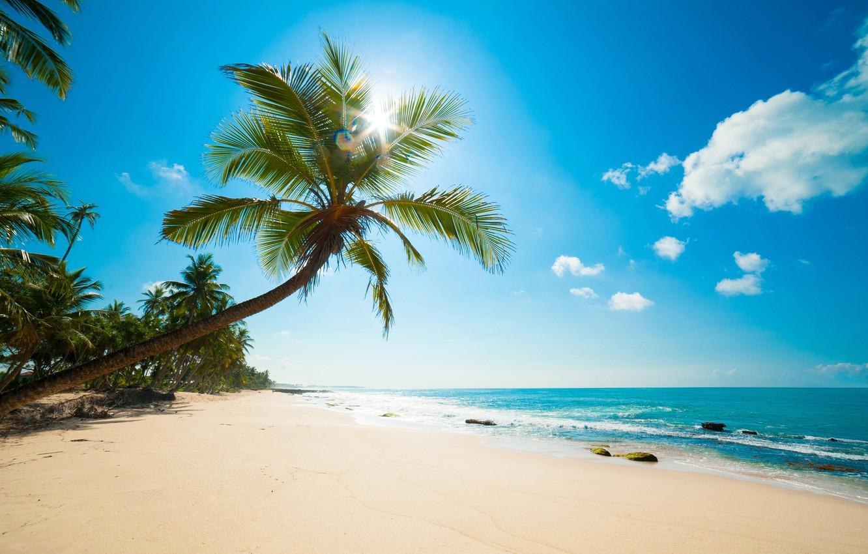 Wallpaper Sea Beach Tropics Caribbean Images For Desktop Section Priroda Download