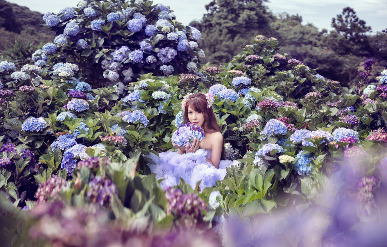 Photo wallpaper girl, flowers, photo session, Hortensia