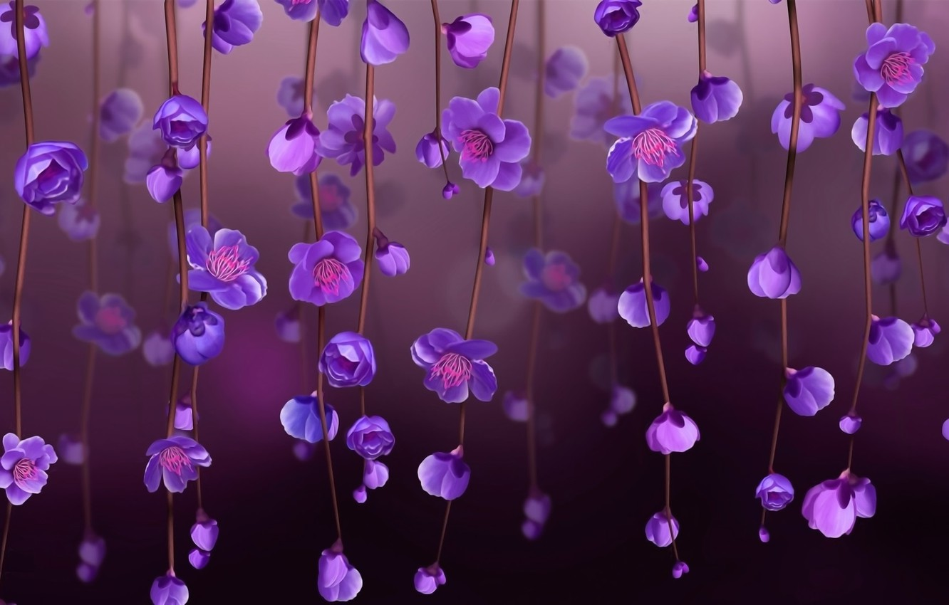 Photo wallpaper light, background, stems, spring, petals, stamens, buds, picture, purple flowers