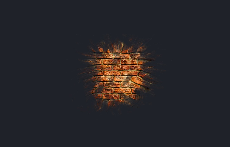 Photo wallpaper macro, wall, minimalism, brick, brick wall