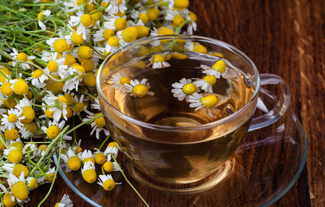 Photo wallpaper flowers, tea, Daisy, drink