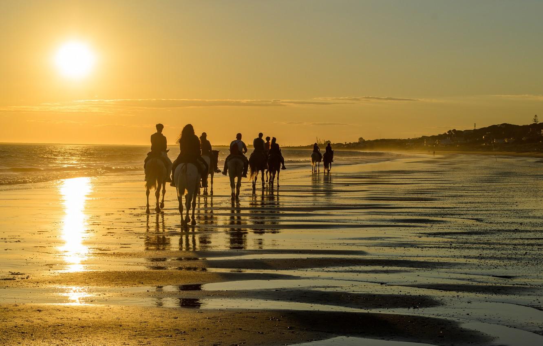 Photo wallpaper beach, ocean, people, tourism, camels