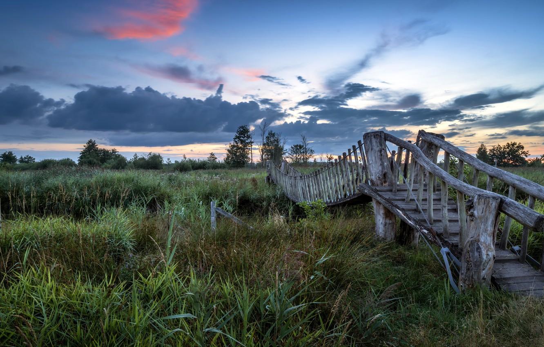Photo wallpaper bridge, river, the evening