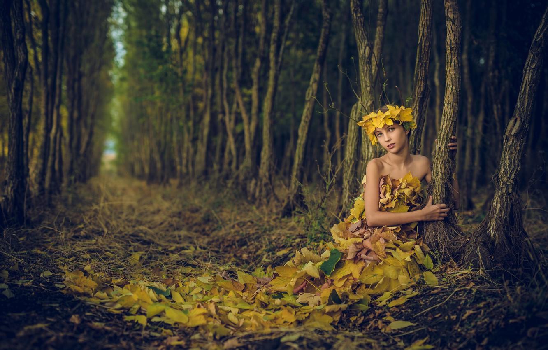 Photo wallpaper forest, leaves, girl, Ivan Slavov