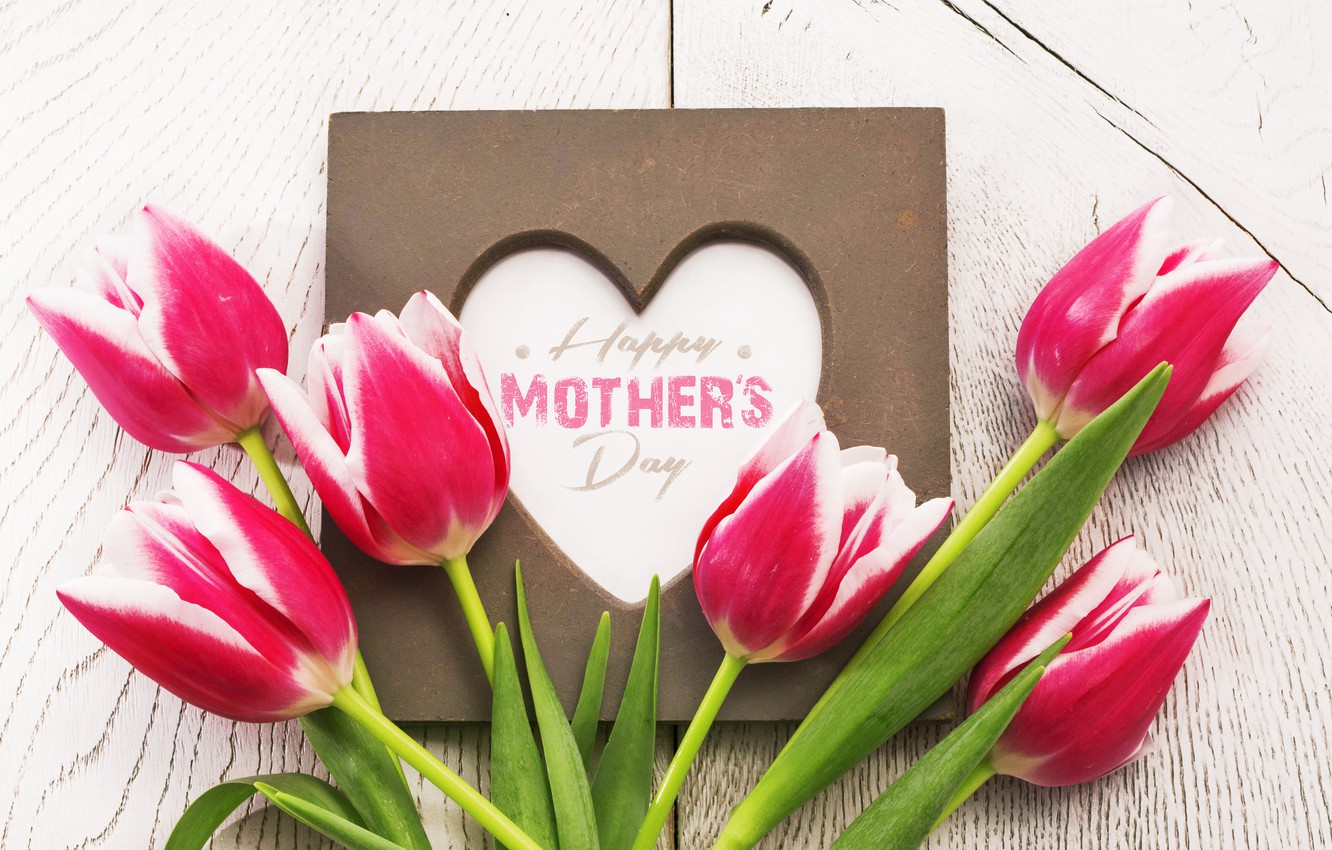 Photo wallpaper flowers, heart, tulips, red, love, heart, wood, romantic, tulips, spring, red tulips, mother's day