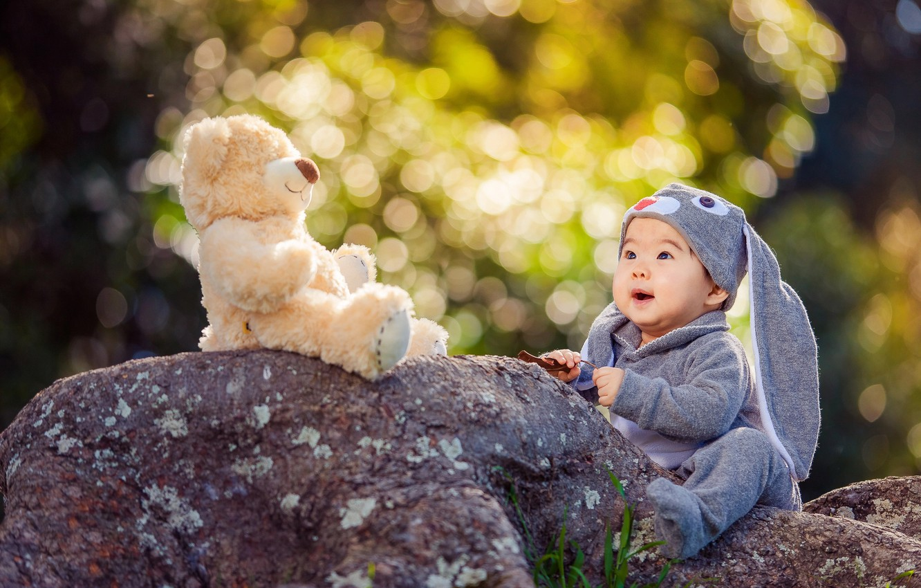 Photo wallpaper nature, stones, toy, hare, baby, bear, costume,