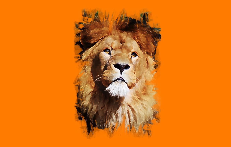 Photo wallpaper look, face, Leo, art