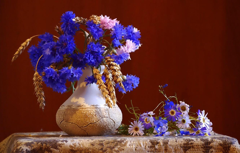 Photo wallpaper flowers, still life, cornflowers