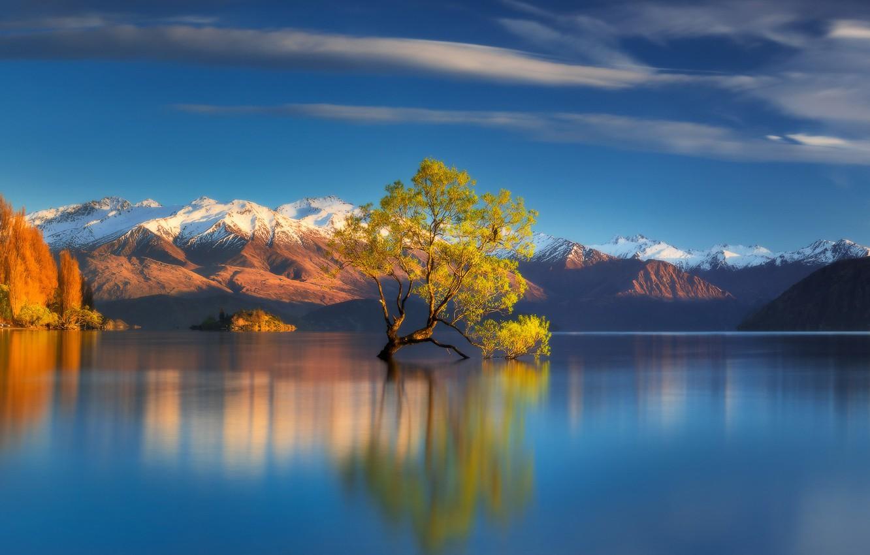 Wallpaper Autumn Mountains Lake Tree New Zealand New