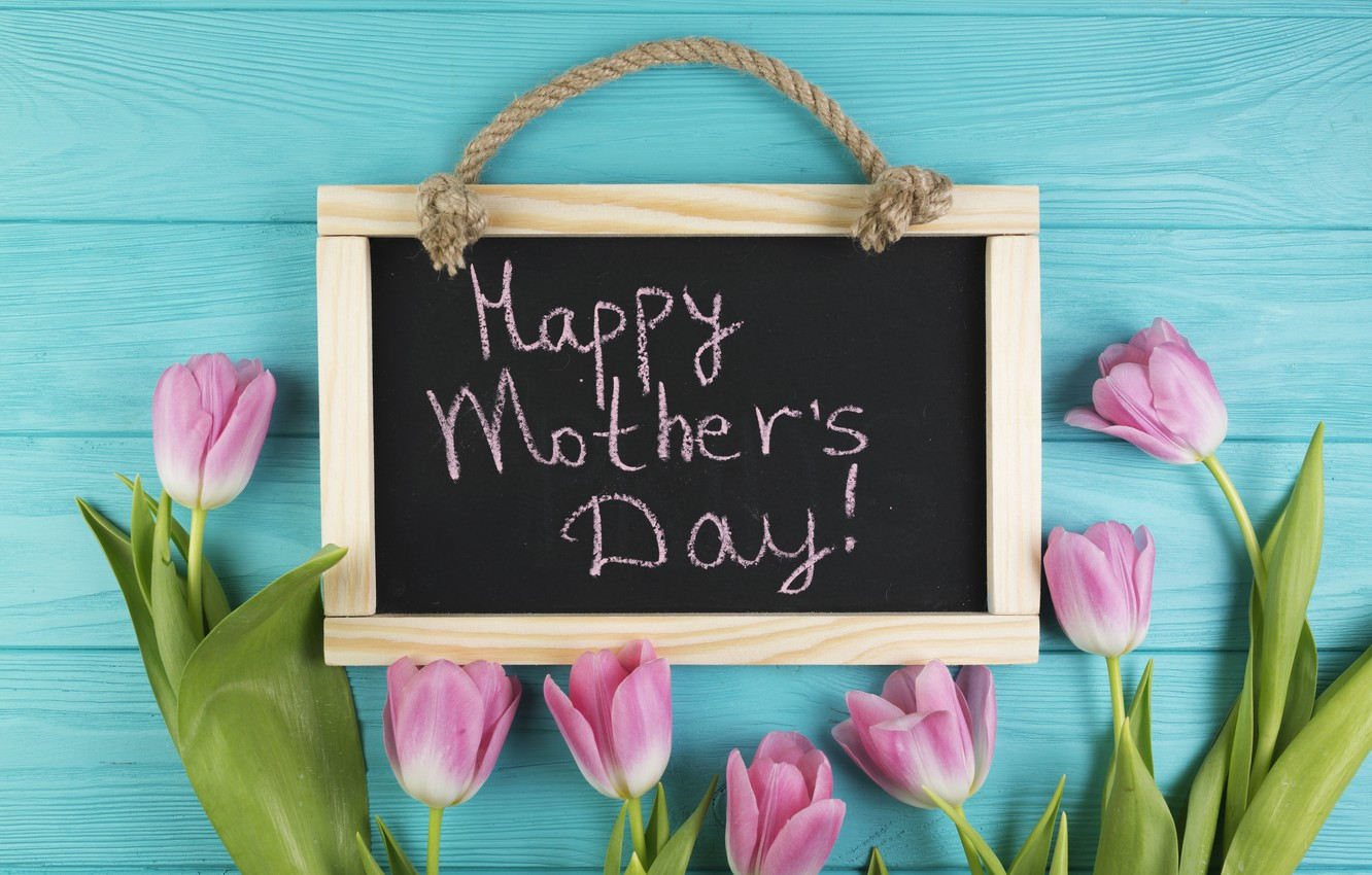 Photo wallpaper flowers, gift, tulips, Board, pink, fresh, wood, pink, flowers, tulips, gift, spring, tender, mother's Day