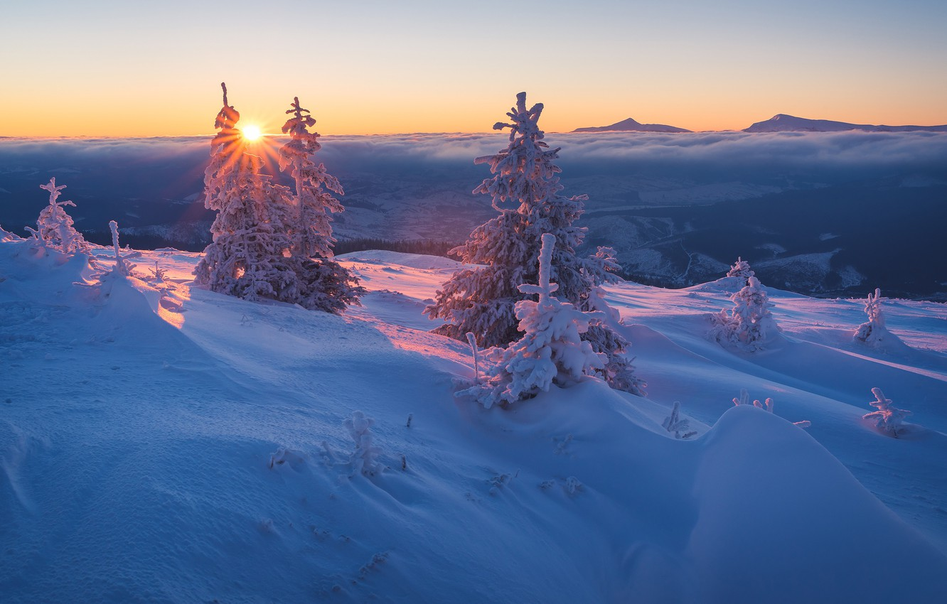Photo wallpaper winter, forest, the sky, the sun, clouds, rays, snow, landscape, sunset, mountains, branches, hills, beauty, …