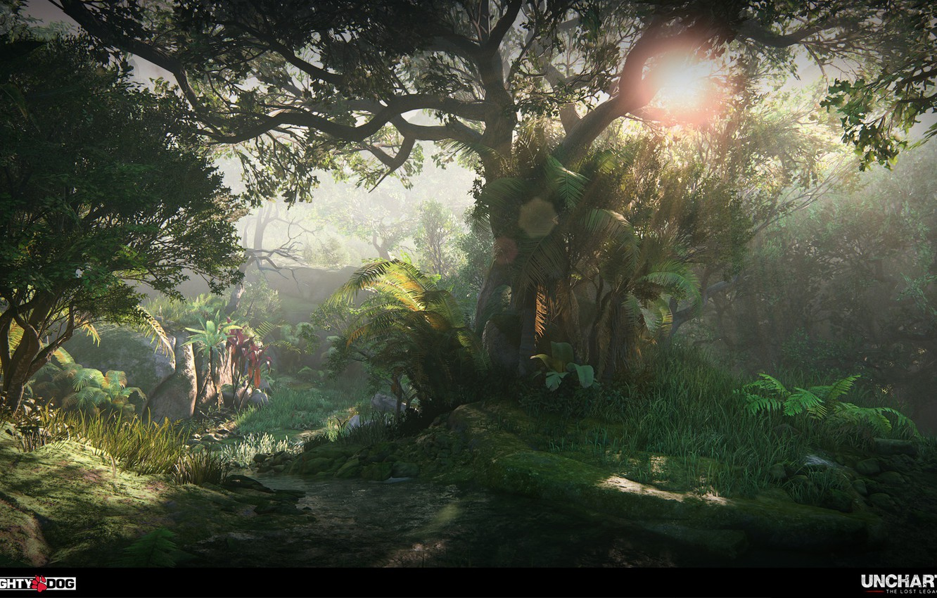 Wallpaper Forest Trees Uncharted The Lost Legacy Intro To