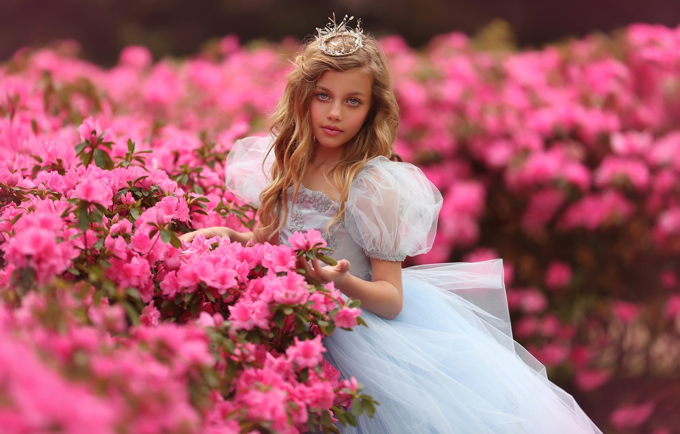 Photo wallpaper flowers, nature, crown, dress, girl, outfit, Princess, the bushes