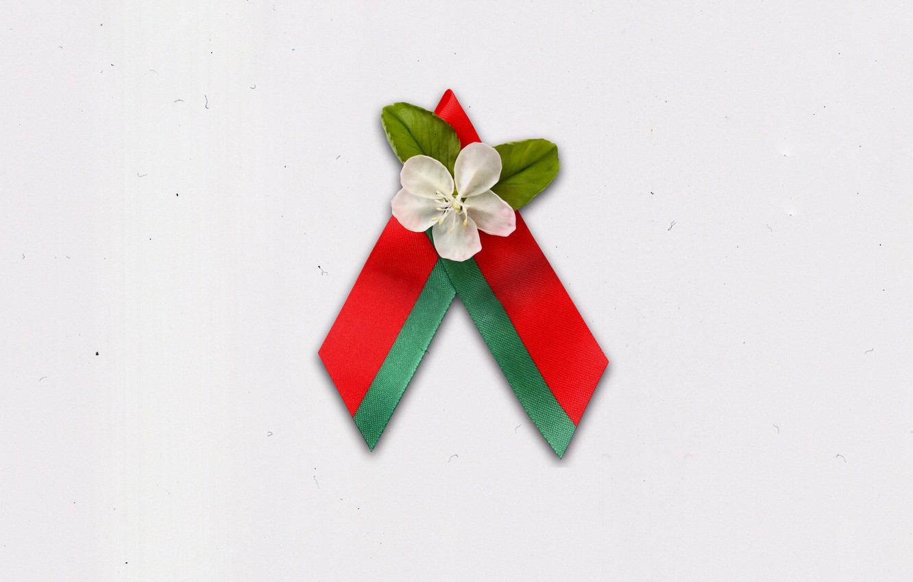Photo wallpaper May 9, Symbol, Belarus, Apple blossoms, Flowers Of The Great Victory, Belarusian Republican youth Union