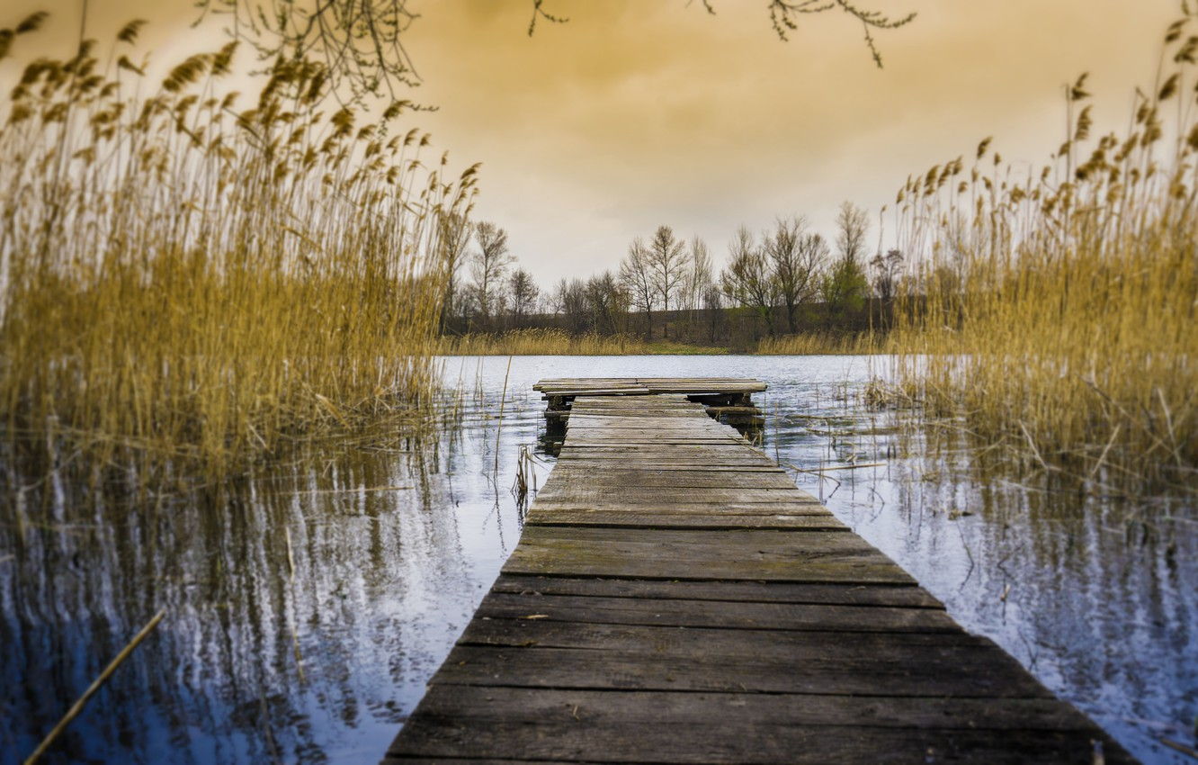 Photo wallpaper autumn, water, lake, the evening, hdr, reed, Russia, multi-monitors, ultra hd
